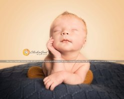 Born to pose- Newborn Session